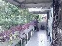 PH Avenida de los Constituyentes Agronomia