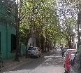 http://amaira.com/buscador/imagenes/FUT/FUT645_2.jpg
