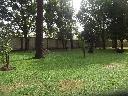http://amaira.com/buscador/imagenes/LOU/LOU49_2.jpg
