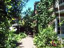 vista desde entrada.jpg